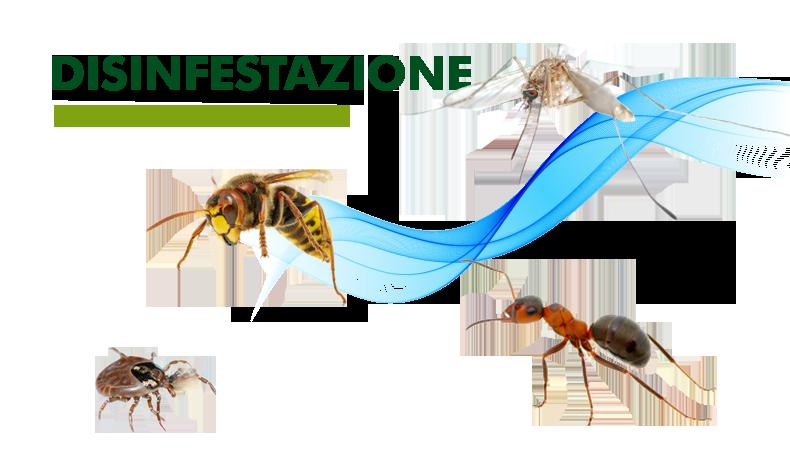 INTERVENTI DI DISINFESTAZIONE E DERATTIZZAZIONE ANNO 2020